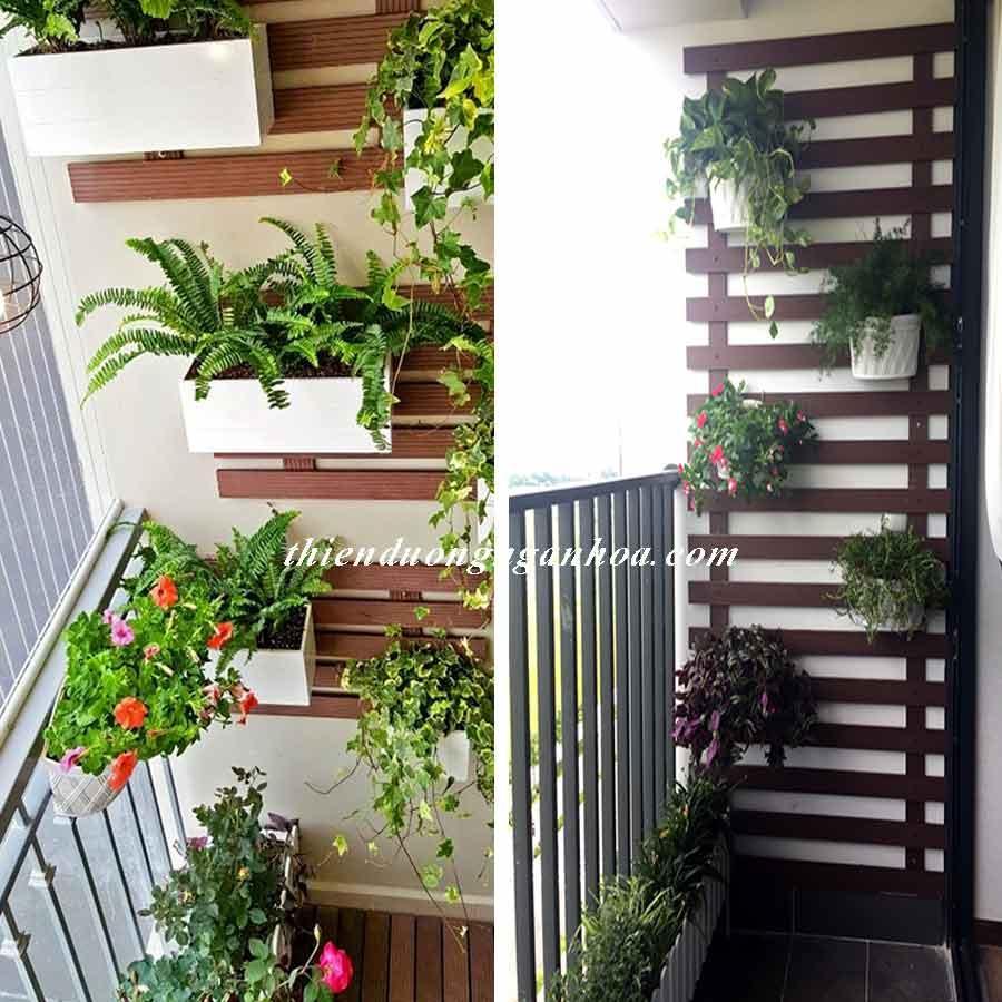 Thiết kế dàn cây ốp tường, làm dàn ốp tường bằng thanh nhựa gỗ composite