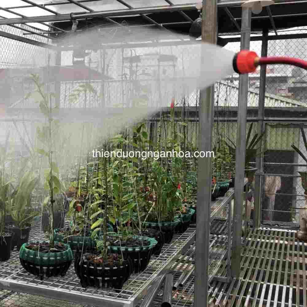 Vòi tưới hoa sen, vòi tưới 1000 lỗ cho hoa lan và các loại cây